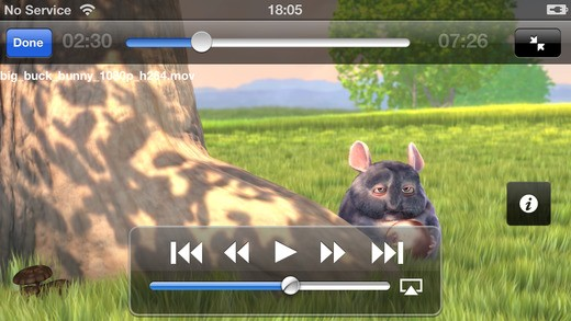 flash video plyer for iPhone