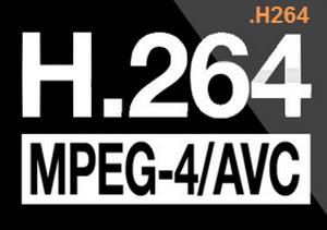 h264 icon