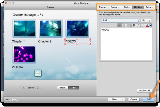 customize DVD menu, buttons, style, etc.